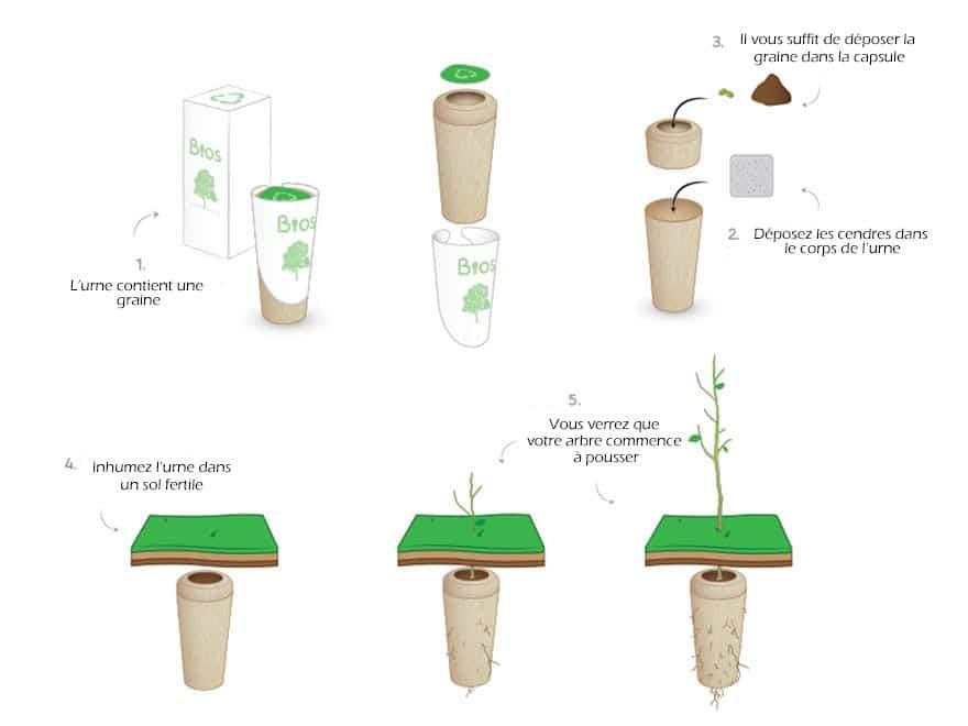 urne funeraire a planter