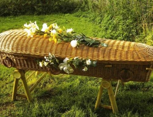Cimetières durables et obsèques écologiques : une tendance d'avenir ?