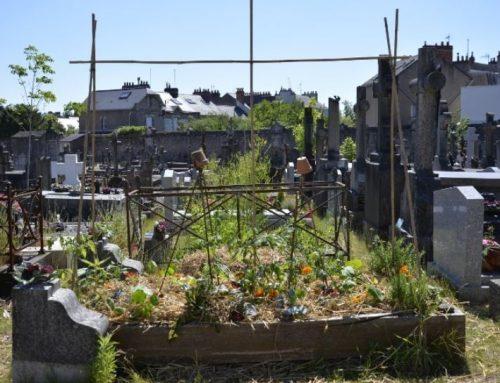 Big Bang Memorial : tombes fleuries, action citoyenne et cimetière vivant !