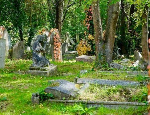 Inhumation ou crémation : quel est le rite funéraire le plus écologique ?